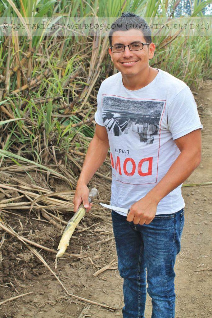 Ricky; cutting sugarcane, Turrialba