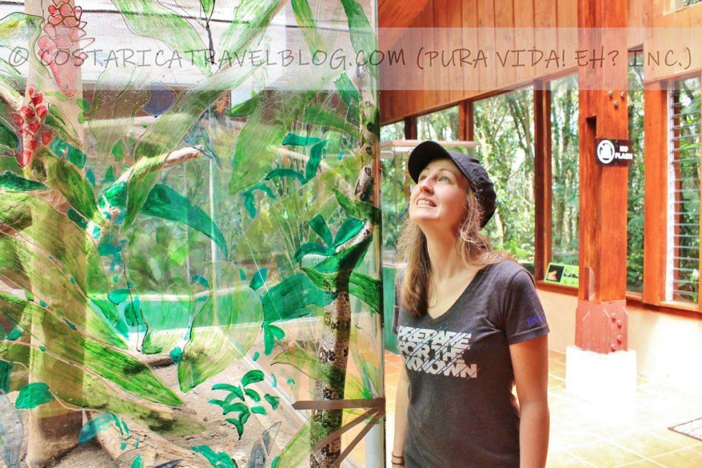 Nikki; snake exhibit at the Selvatura Park