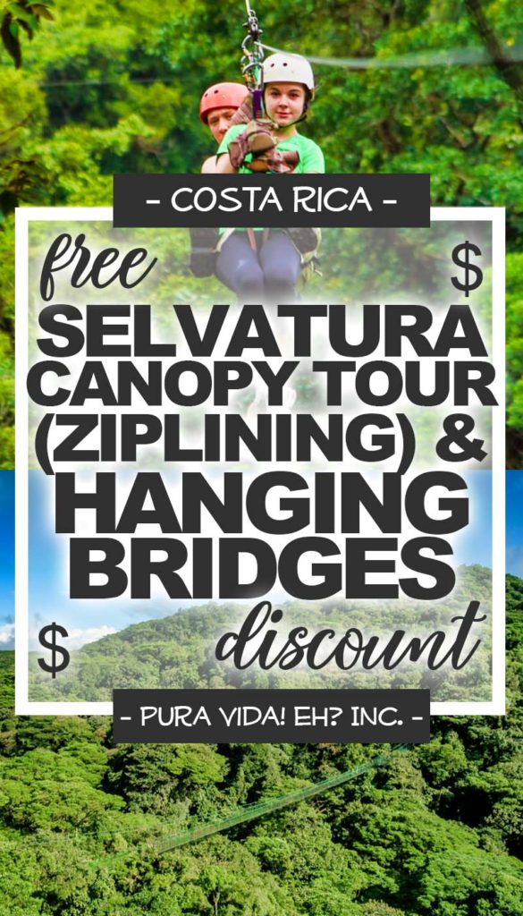 DISCOUNT: Selvatura Canopy Tour (Ziplining) And Treetop Walkways Hanging Bridges (Self-Guided) – Child (From Monteverde / Operated by Selvatura)